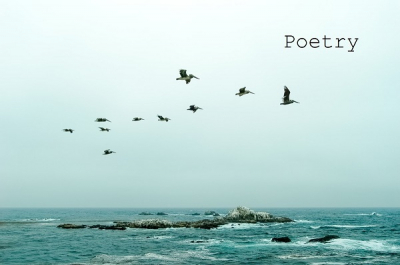 Poetry Collection 2018 by JNg